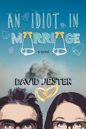An Idiot in Marriage book image