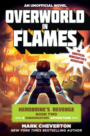 Overworld in Flames book image