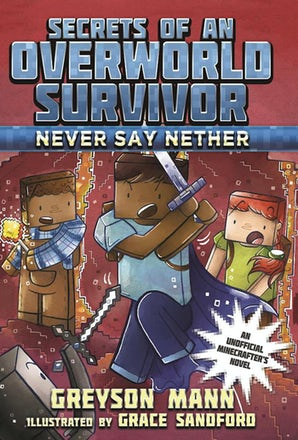 Never Say Nether book image