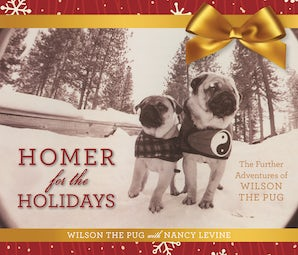 Homer for the Holidays book image