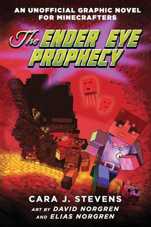 The Ender Eye Prophecy book image