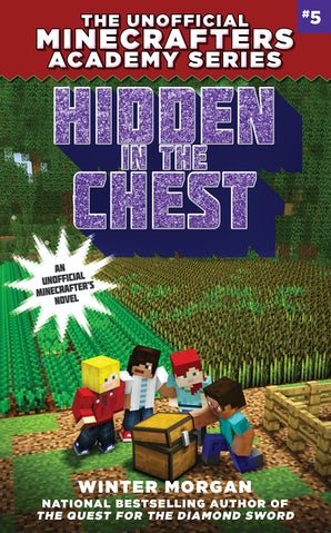 Hidden in the Chest book image