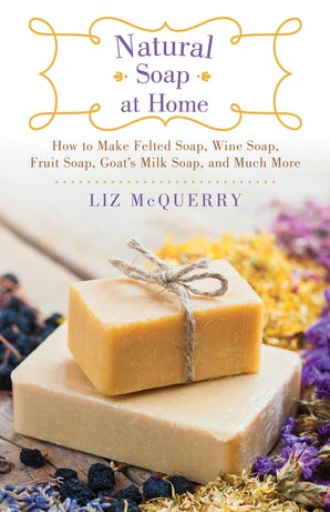 Natural Soap at Home book image
