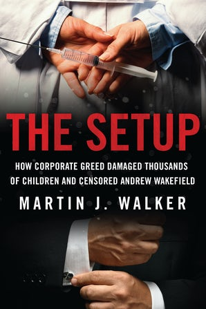 The Setup book image