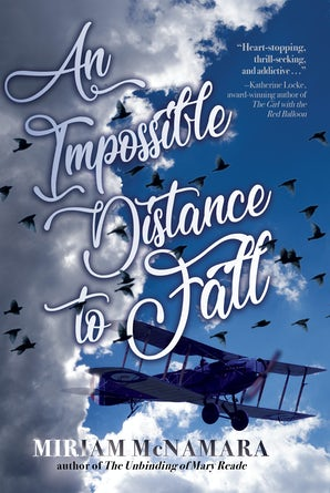 An Impossible Distance to Fall book image