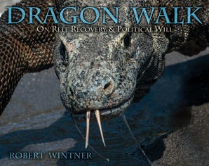 Dragon Walk book image