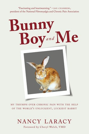 Bunny Boy and Me book image