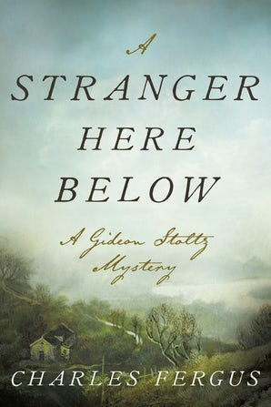 A Stranger Here Below book image
