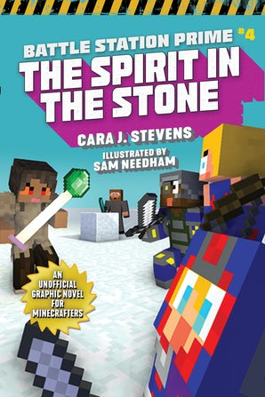 The Spirit in the Stone book image