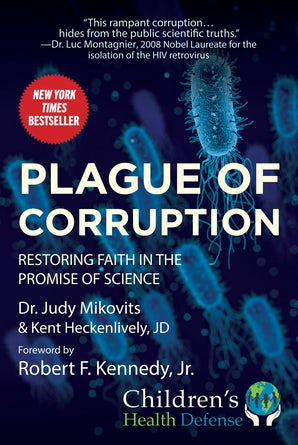 Plague of Corruption book image
