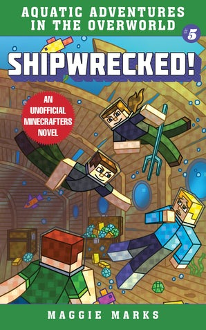 Shipwrecked! book image