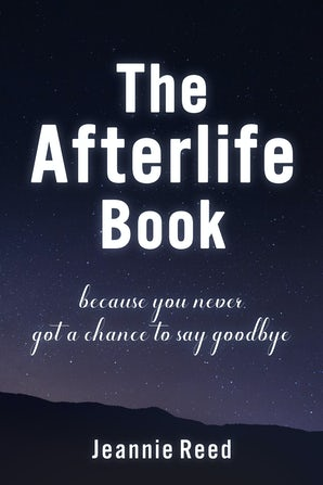 The Afterlife Book book image