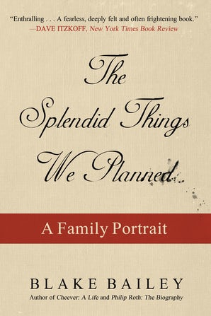 The Splendid Things We Planned book image