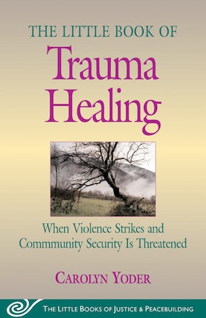 Little Book of Trauma Healing book image