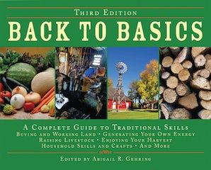 Back to Basics book image