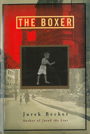 The Boxer book image