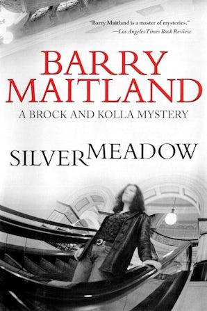 Silvermeadow book image