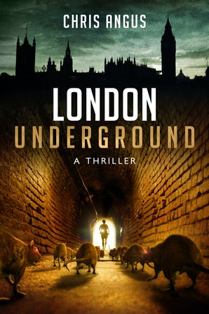 London Underground book image