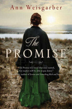 The Promise book image