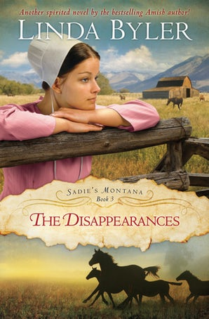 Disappearances book image