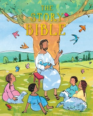 The Story Bible book image