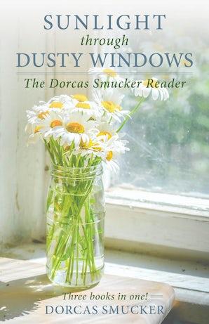 Sunlight Through Dusty Windows book image