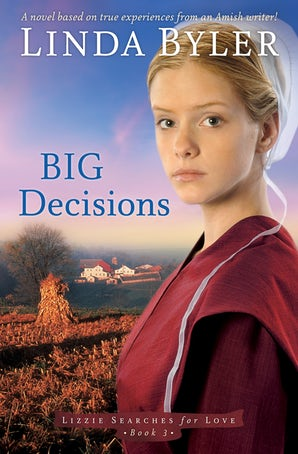 Big Decisions book image
