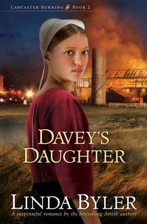 Davey's Daughter book image