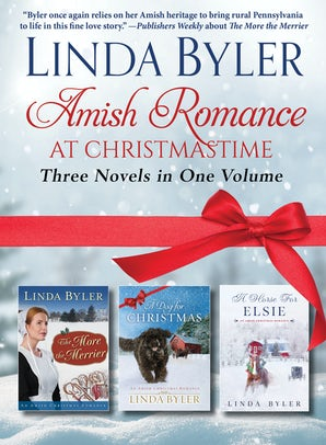 Amish Romance at Christmastime book image