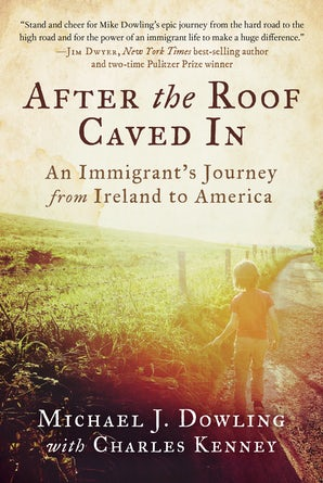 After the Roof Caved In book image